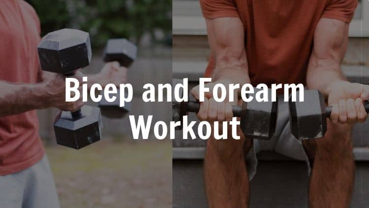 A bicep and forearm workout being performed with dumbbells