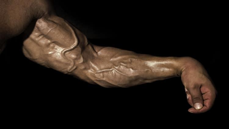 A bodybuilder showing his big vascular forearm