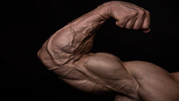 Bodybuilder flexing his vascular arm