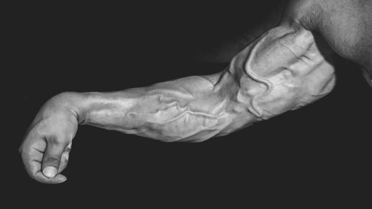 Bodybuilder flexing his forearm