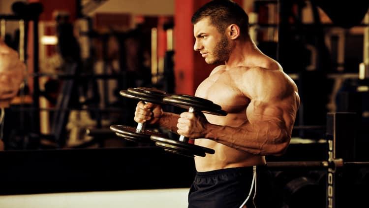 Ripped bodybuilder doing hammer curls