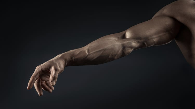 Close up of a muscular arm