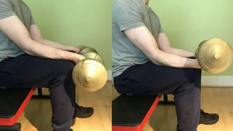 A demonstration of how to perform a dumbbell forearm curl with proper form