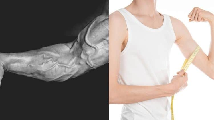 A large forearms positioned next to a skinny man's arm