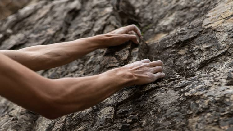 The hands and forearms of a rock climber