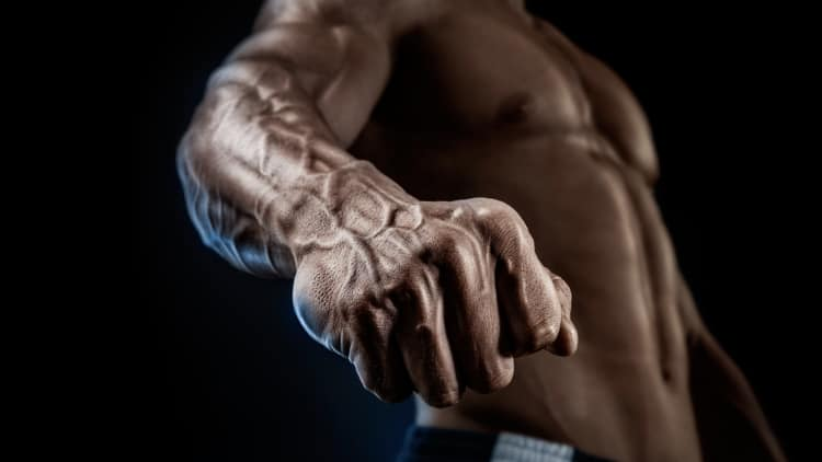 Close up of a man's fist and forearm