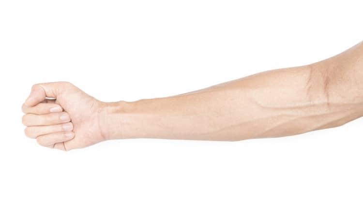 veiny male forearm