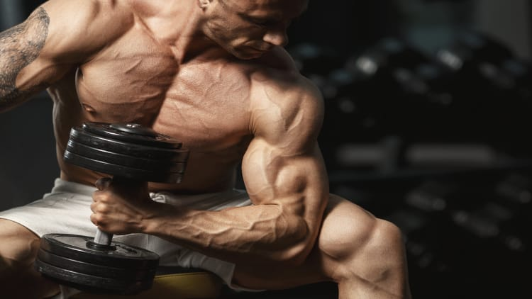 Bodybuilder performing hammer concentration curls in the gym weight room
