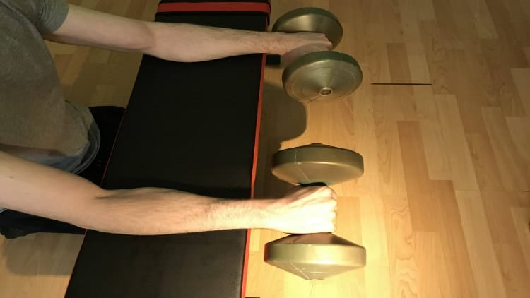 Man performing a palms down dumbbell wrist curl