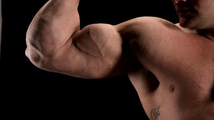 A bodybuilder flexing his arm