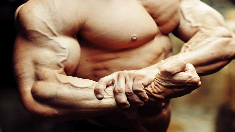 Close up of a bodybuilder's flexed arm