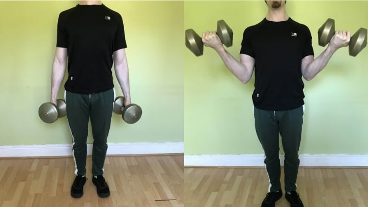 A man performing a dumbbell supinated curl for his biceps