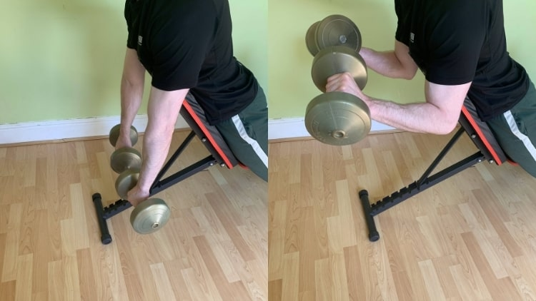 A man doing reverse spider curls with dumbbells