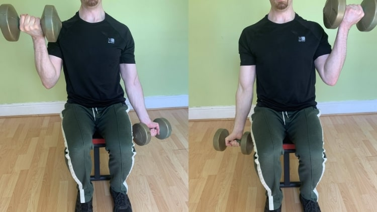 A man performing a seated alternating dumbbell curl for his biceps