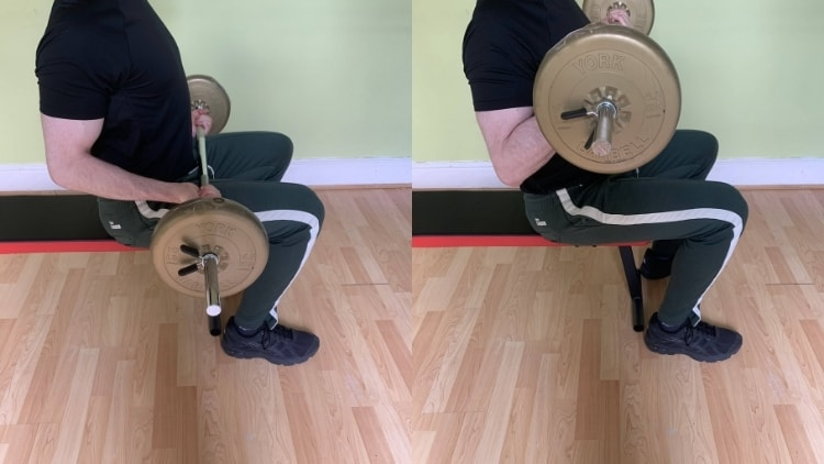A man doing a seated barbell curl for his biceps