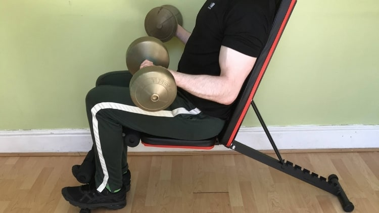 A man doing a seated bicep curl with dumbbells