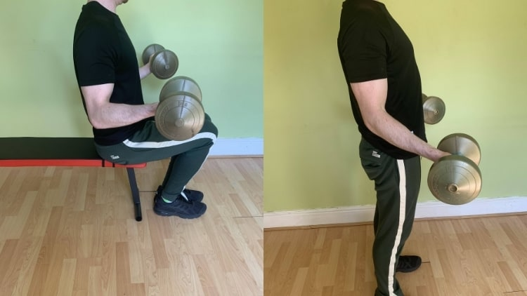 A seated dumbbell curl vs standing curl comparison