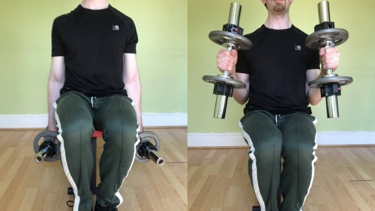 A man doing seated dumbbell hammer curls for his biceps