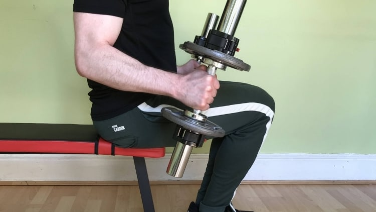 A man doing a seated hammer curl