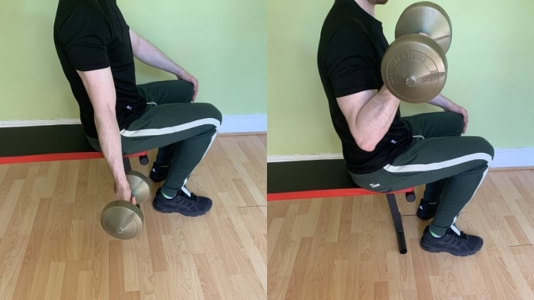 A man doing a seated one arm dumbbell curl for his biceps