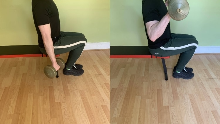 Man doing a seated reverse dumbbell curl