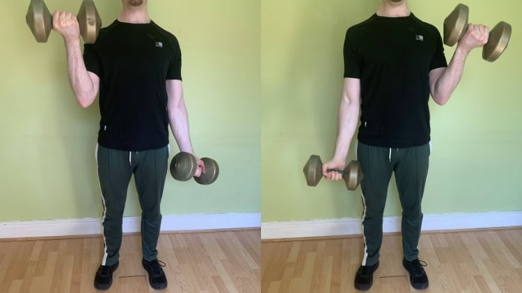 A man performing a single arm bicep curl with dumbbells