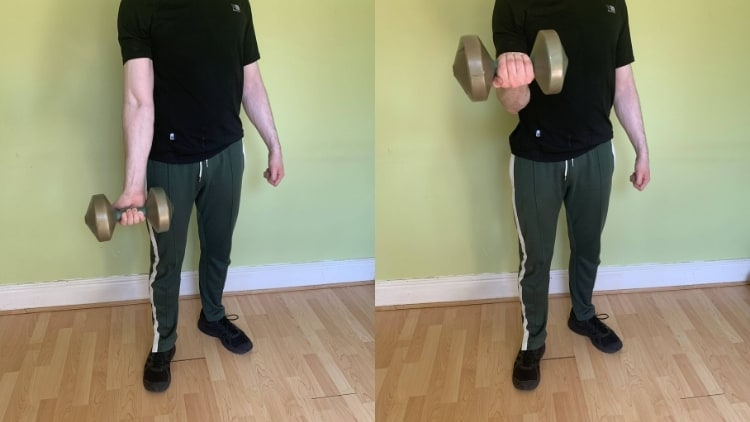 A man doing a single arm curl for his biceps