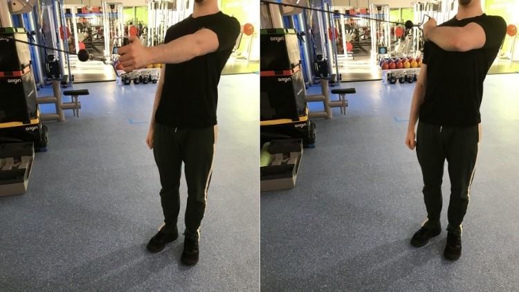 A man performing standing cable concentration curls