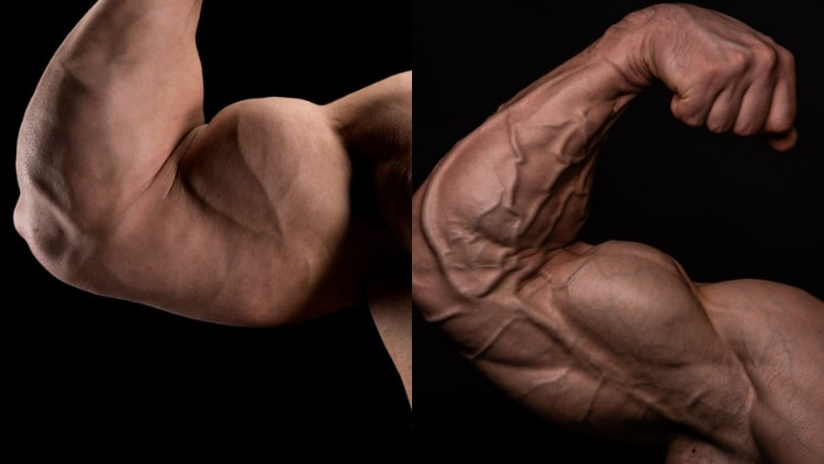 How to get a bicep peak the right way